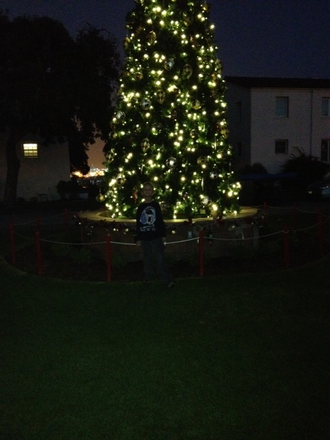 photobigtree