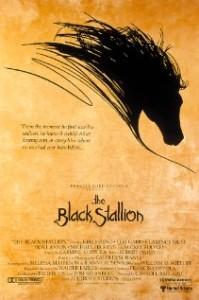 BlackStallion