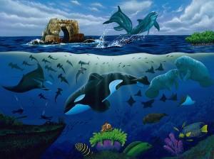 oceansfy