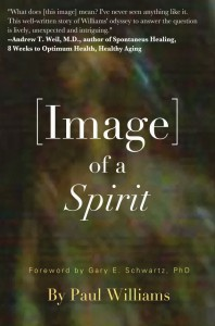 Image of a Spirit cover