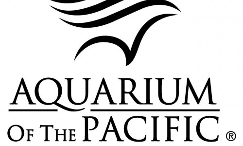 Celebrate The Cultures Of The Pacific Islands During The Aquarium&#8217;s 12th Annual Pacific Islander Festival <small class=