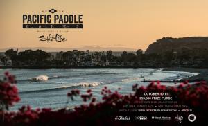PPG AD for NOV Surfer