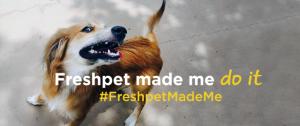 FreshpetMadeMeHeader_r4_v1