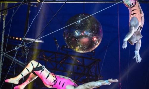 Circus Vargas presents iLUMINOUS! <small class=