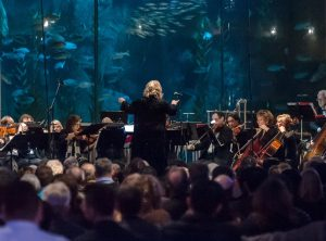 Musique Sur La Mer plays at The Aquarium of the Pacific Long Beach on Sunday, March  5, 2017.(Photo by Joshua Sudock, Musique Sur La Mer)