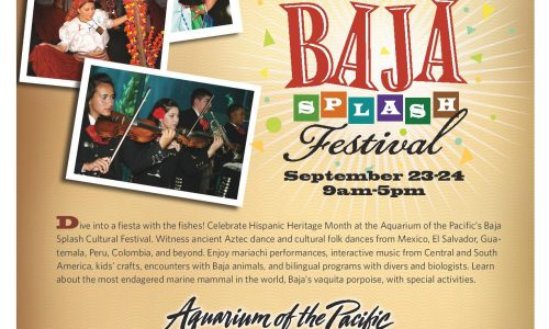 A fiesta with the fishes for all ages with interactive Latin music, painting, dance &#038; more <small class=