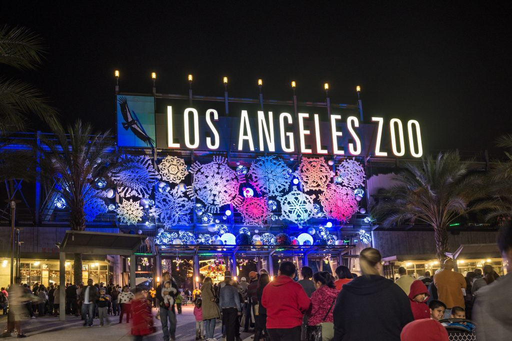 001 Zoo Lights-Jame Pham