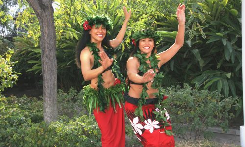 Celebrate the Cultures of the Pacific Islands during the Aquarium&#8217;s 15th Annual Pacific Islander Festival <small class=