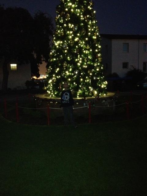 photobigtree