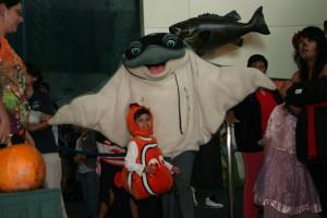 Sting Ray & Nemo Kid