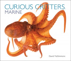 CURIOUS CRITTERS Marine_Cover_3_LowRes