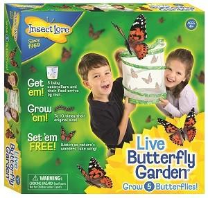 Butterfly Garden Pkgsmall