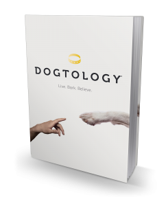 3DBookCover_Dogtology