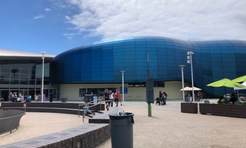 New Pacific Visions Wing at the Aquarium of the Pacific is a Must-Visit this Summer!
